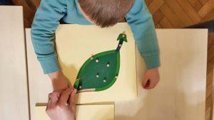 Read more about the article Diferența dintre educația Montessori și educația tradițională